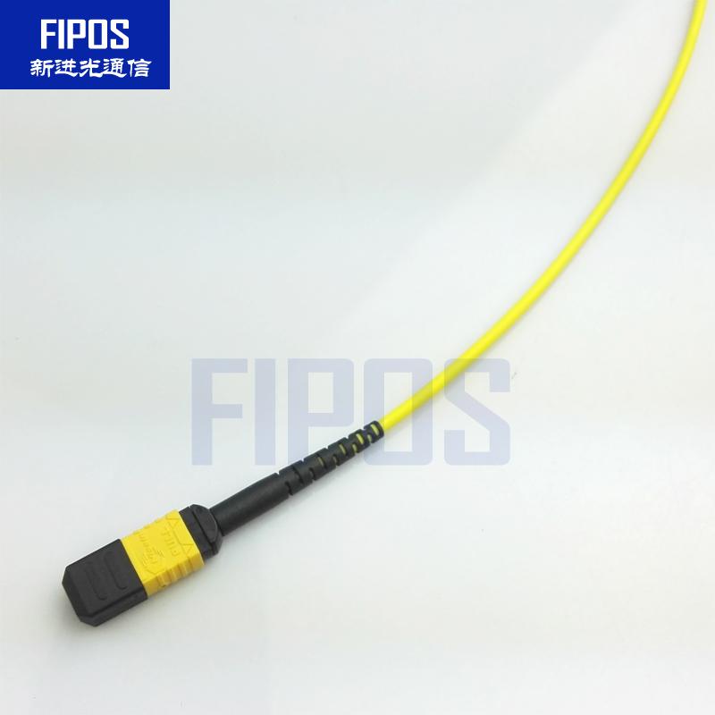 <b>MTP/MPO单模 OS2跳线</b>